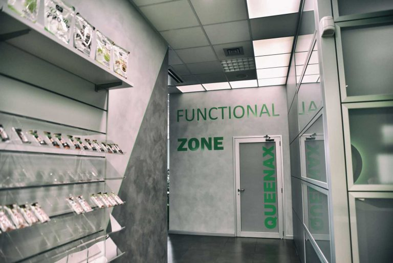 Functional-Zone-Queenax-Palestra-Todo-Playfitness